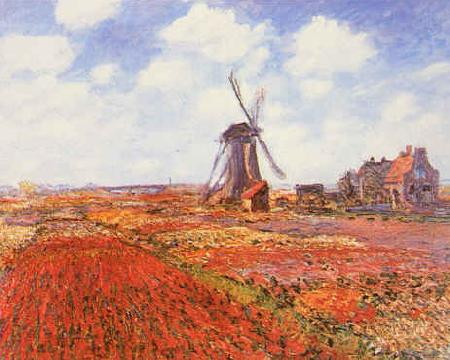 Claude Monet Tulip Fields with Windmill oil painting image